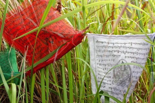 Prayer flags found at the top of Broga Hill.
